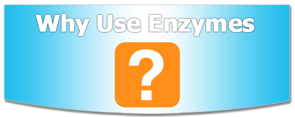 Why Use Enzymes