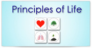 Vital Life Foundation | Principles of Life